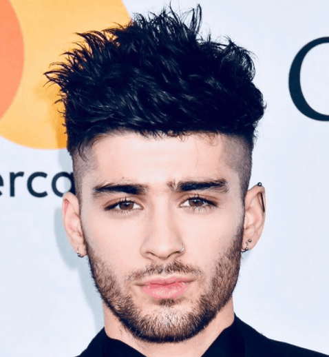 Zain Javadd Malik Biography