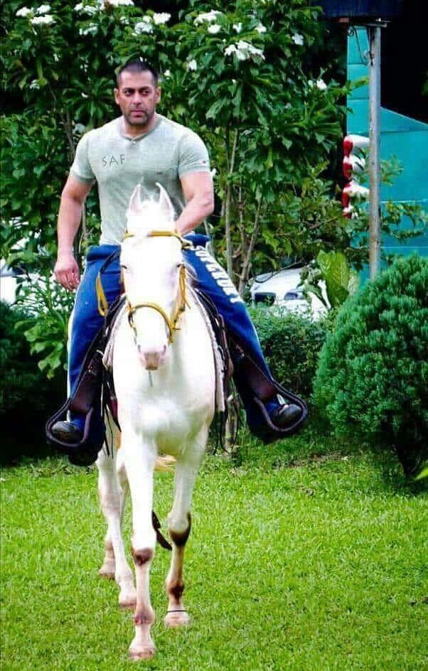 Salman Khan Riding a Horse